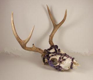 480_Deer1